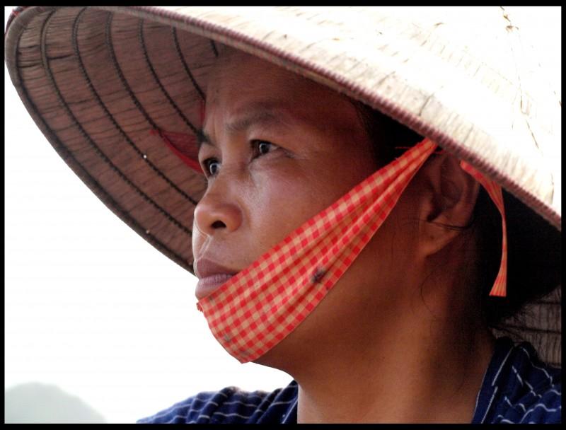 vietnam36 800x608 - Wietnam