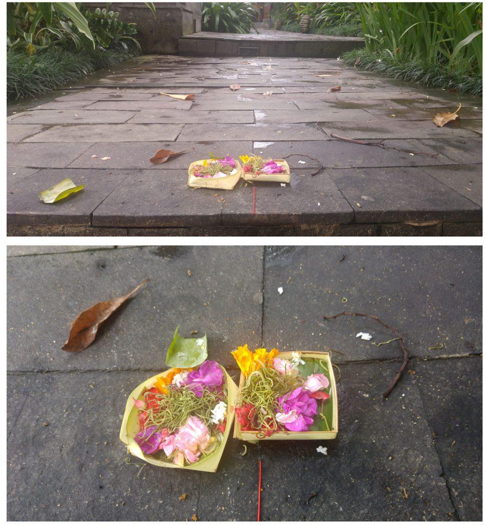 Canang sari, czyli małe pudełeczka z kwiatami i ryżem, które na Bali można spotkać dosłownie wszędzie i które powodują, że trzeba bardzo ostrożnie stąpać po balijskiej ziemi. Mają być darem dla bogów oraz dowodem wdzięczności Balijczyków za wszystkie prezenty od losu.
